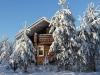 Дом в лесу из бревна